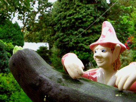 The Gardening Pixie, with a courgette.