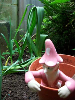 Gardening Pixie