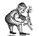 An Early Modern Gardener.